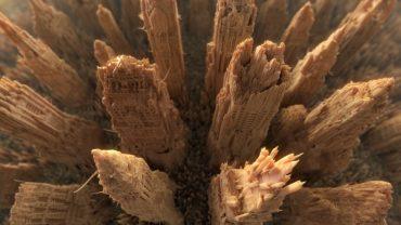 robin wood werbung