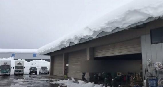 schnee vom dach